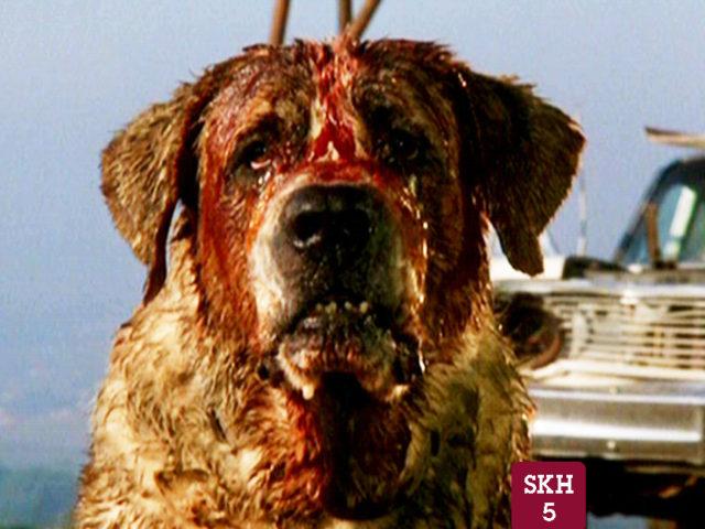 Stephen King Horror-Thon: Cujo (1983)